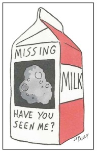 Jy13 Milk Carton